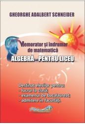 Memorator si indrumar de matematica algebra pentru liceu